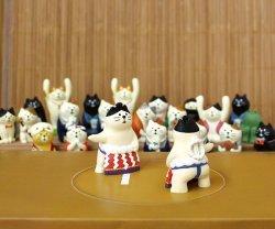 画像2: concombre  旅猫 東京 両国 おすもう猫